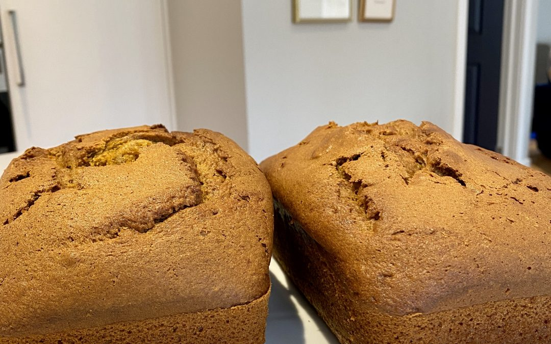 Tricia's Pumpkin Bread (Birch family favourite!)